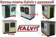 Котлы-плиты центрального отопления Kalvis с духовкой