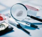 Дактилоскопическая экспертиза (снятие отпечатков пальцев)