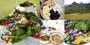Организация пикников в Крыму