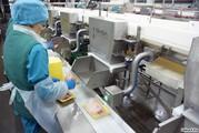 Работа в Польше на упаковке мяса!Без опыта!